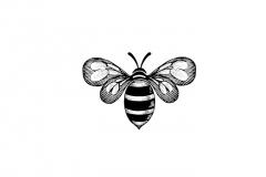 Bee_Icon_2
