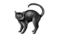 Black-Cat-Art-