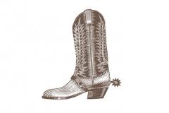 Cowboy-boot-art-