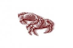 Crab Woodcut