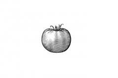 Tomato_Woodcut