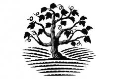 Vine Tree 1