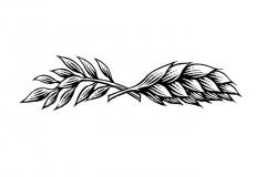 Wheat _amp_ Oats icon