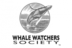 whale_watchers