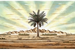 Desert_Palm_Tree