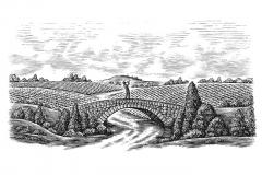 Fife-Creek-Vineyards-