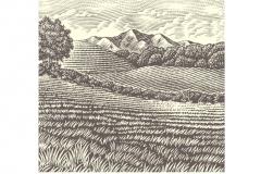 Old-Mountain-art