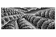Orchard background art