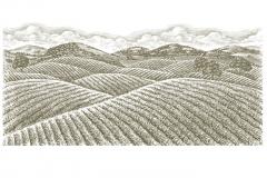 Wheat-Fields-art
