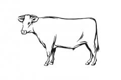 Beef-art