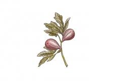 Fig-art_001