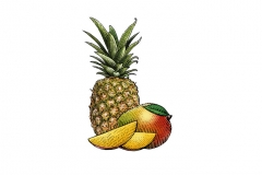Mango-Pineapple-art