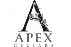 Apex-art
