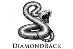 DiamondBack_logo