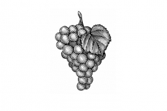 Grape-art