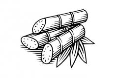 Sugarcane art 3