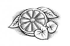 grapefruit-ginger