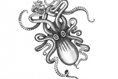 Kraken_Rum