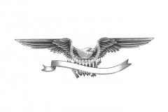Eagle_001