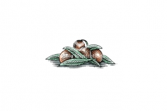 Olives-art