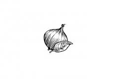 Onion-sage-art