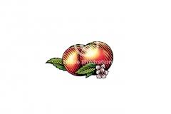 Peach-Art