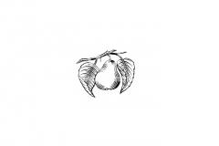 Pear-icon