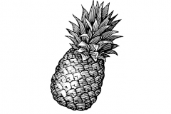 Pineapple-art