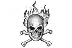 Skull-amp-Crossbones-art