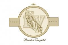 BV_Map