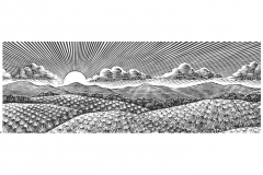 Agave_Fields_woodcut_001