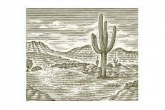 Cactus-Mountain