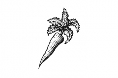 Carrot-art