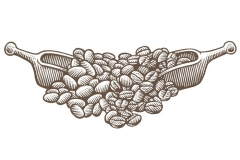 Coffee _amp_ Cocoa Beans