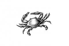 Crab_Linocut