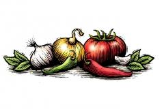 Tomato-_amp_-Onion-art--copy