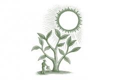 Tree-amp-Sun-Art-S-Nobl