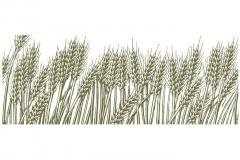 Wheat_field_Woodcut